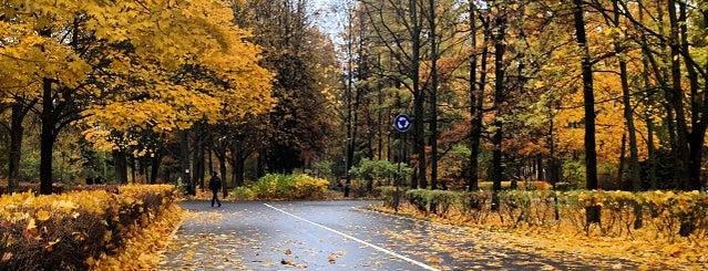 Парк Политехнического университета is one of Места для онлайн трансляций.