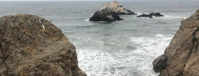 Point Lobos is one of around house.