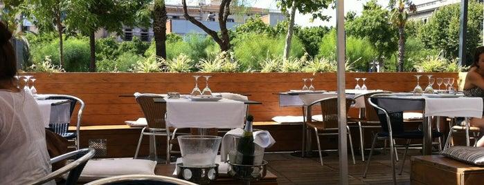 Tapas Club is one of Restaurants col·laboradors 2011.