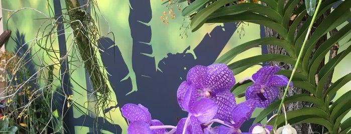 United States Botanic Garden is one of Washington, DC Wish List.