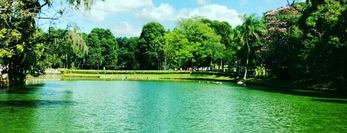 Parque Estadual Alberto Löfgren (Horto Florestal) is one of #IHeartSãoPaulo.