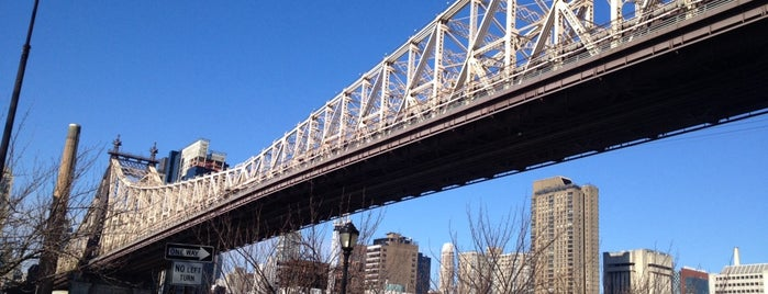 Queensboro Bridge Pedestrian & Bike Path is one of Things To Do in Queens, NY.