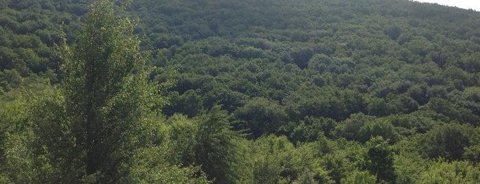 Hársbérc Vendégház is one of countryside • hungary • sleep.