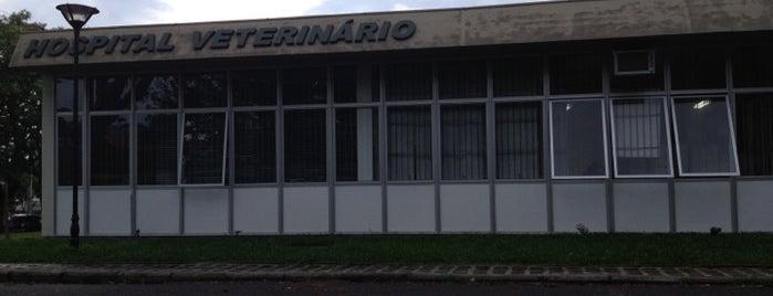 Hospital Veterinário is one of All about Curitiba.