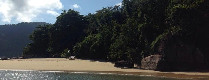 Praia do Engenho is one of Praia.