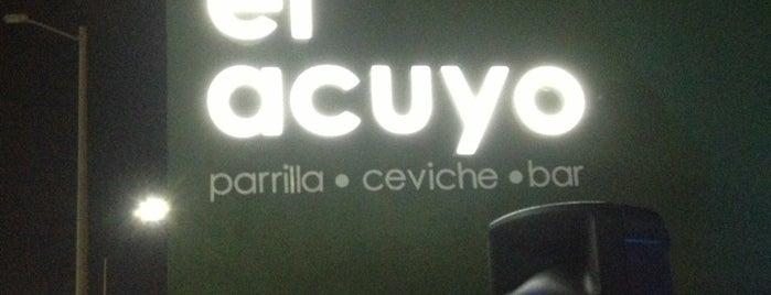 El Acuyo is one of Veracruz.