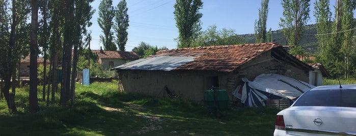 Anasultan is one of Kütahya | Merkez Köyler.