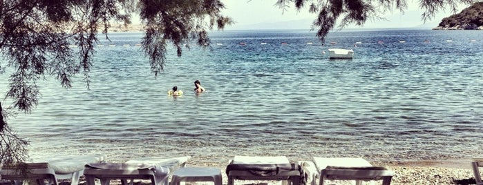 Selvi Beach is one of Bodrum !!.