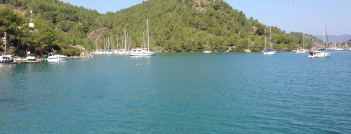 Orhaniye Koyu is one of Marmaris.