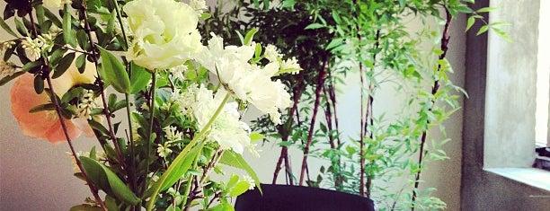 Vert et blanc is one of Seoul.
