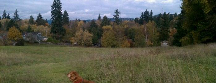 Spring Garden Park is one of The 15 Best Dog Runs in Portland.