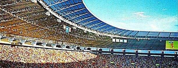 Arena Castelão is one of Estadios Brasil Mundial FIFA 2014.