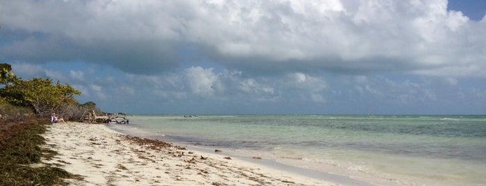 Sandspur Beach is one of USA Key West.