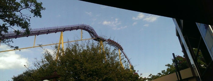 Apollo's Chariot - Busch Gardens is one of Roller Coaster Mania.
