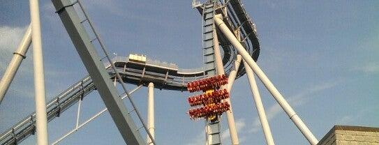 Griffon - Busch Gardens is one of Roller Coaster Mania.