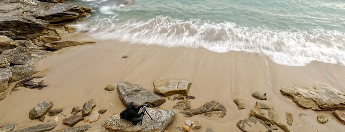 Lady Bay Beach is one of 🇦🇺 //SYDNEY// 🇦🇺.