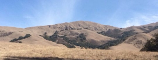 Mission Peak Regional Preserve is one of Fremont? Seriously?.