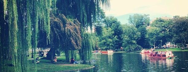 Boston Public Garden is one of Boston Hits.