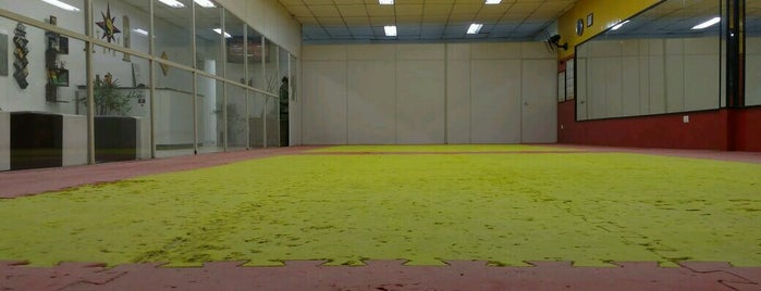 TSKF Academia de Kung Fu Lapa is one of TSKF Lapa.