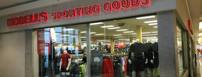 Modell's Sporting Goods is one of Anything sports.