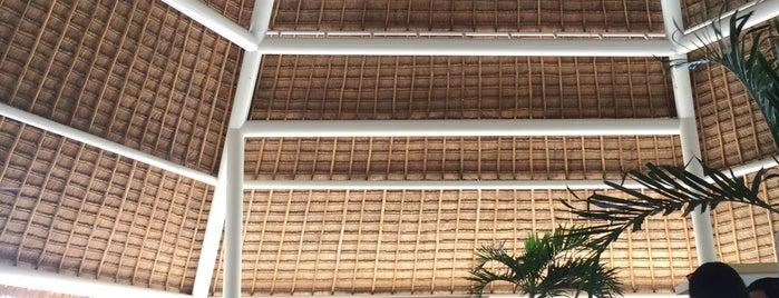 Avis Renta de Autos Cozumel Hotel Park Royal is one of Global.