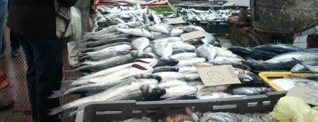 Tržnica Zadar   Zadar Market is one of Kroatien.