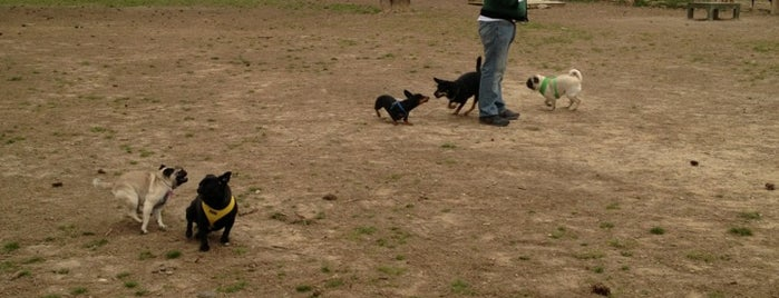 Loch Haven Dog Park is one of When in Bham....