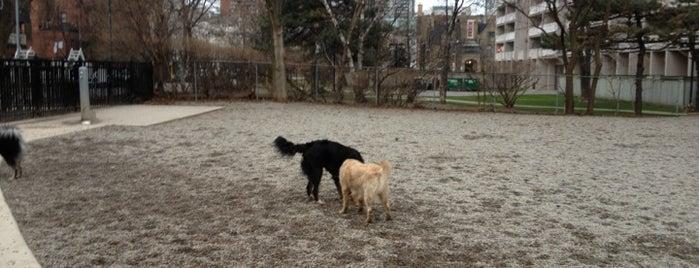 Leash Free Dog Park Wellington North Ontario