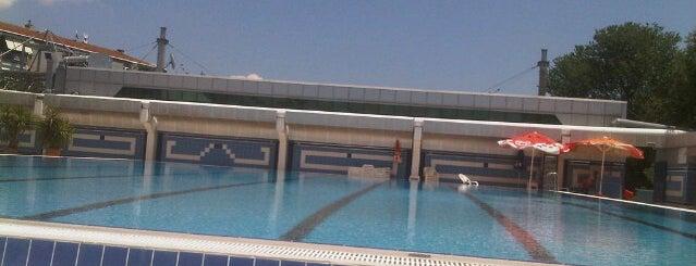 Bakirkoy Spor Vakfi Havuzu is one of İstanbul Avrupa Yakası #4 🍁🍃.
