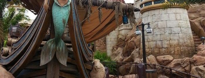 Ariel's Grotto is one of Walt Disney World.