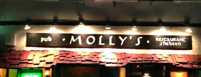 Molly's Shebeen is one of New York Fire Place Bars.