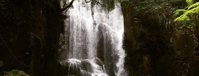 桑ノ木の滝 is one of 日本の滝百選.