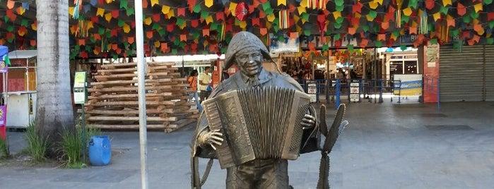 Centro Luiz Gonzaga de Tradições Nordestinas is one of Turistando.