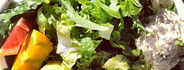 Bread Winners Café & Bakery is one of Best Salads in Dallas.