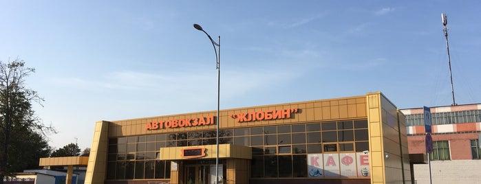 Жлобин is one of cities.