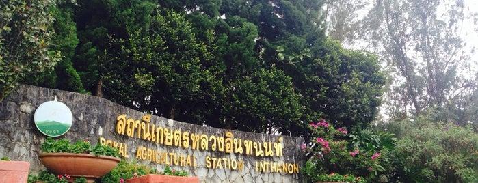สถานีเกษตรหลวงอินทนนท์ (Royal Agricultural Station - Inthanon) is one of Greater Chiang Mai.