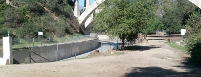 Lower Arroyo Seco Park is one of LA Nature.