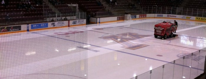Ridder Arena is one of Sports Venues I've Worked At.