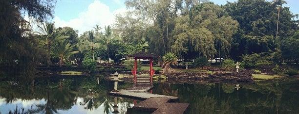 Lili'uokalani Park And Gardens is one of Real World Hawaii ~ Big Island.