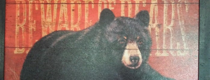 Bear Hunter Rental Cabin by Cabin Fever Vacations is one of Home Theater Cabins in the Smokies.