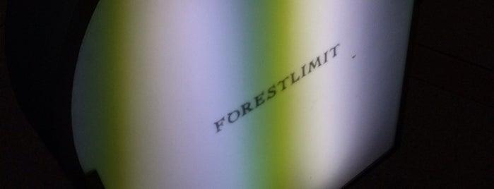 FORESTLIMIT is one of Spielplatz.