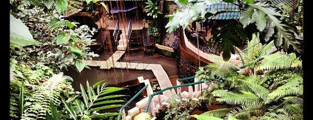 Taksu Spa & Restaurant is one of Bali.