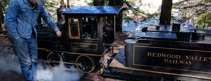 Redwood Valley Railway is one of Northern California Railfans' List.