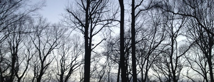 Saddle River County Park - Dunkerhook Area is one of NJ To Do.