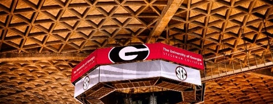 Stegeman Coliseum is one of Sporting Venues To Visit.....