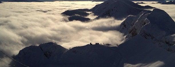 Fernie Alpine Resort is one of Skiing.