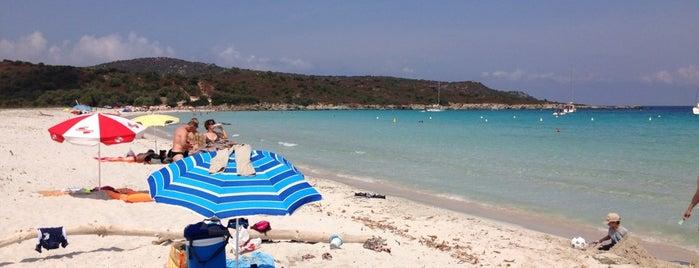 Plage de Loto is one of Corsica.