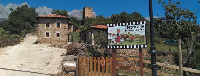 Mogrovejo is one of Guía de Cantabria.