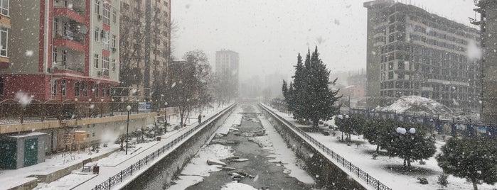 Мамайка is one of Сочинские места.