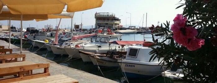 Mordoğan is one of İzmir.